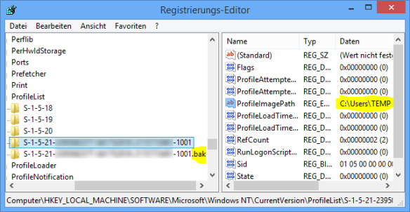 Windows 8 Regedit ProfileList